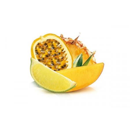 Пюре тропических фруктов Boiron 1 кг